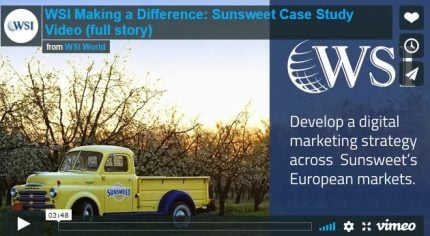 Screenshot of the WSI Case Study for Sunsweet video.